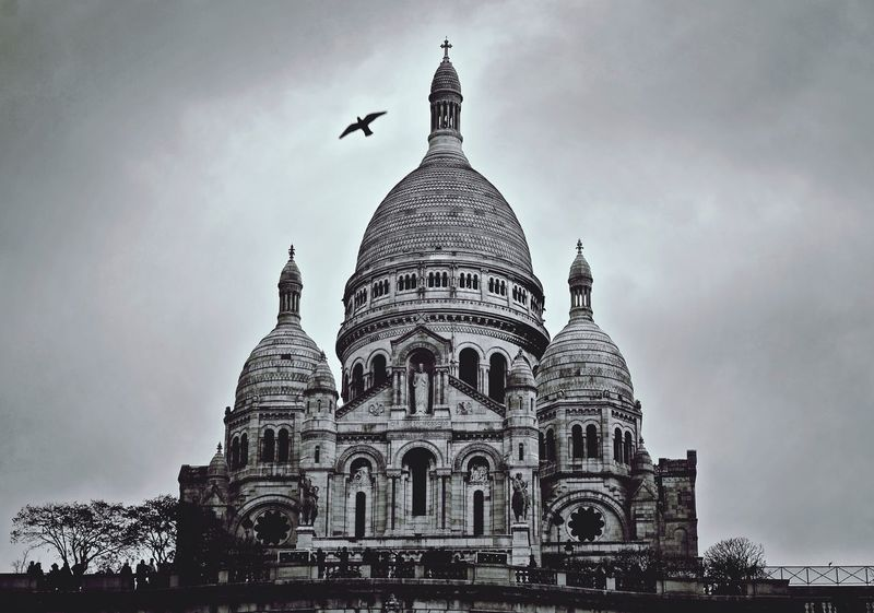 Paris Sacre Coeur Bnw Blackandwhite Taking Photos Enjoying The View Flying High Cloudy Paris, France  Bird Flying High Beautiful Place People Watching Bird Flying Over Sacre Coeur