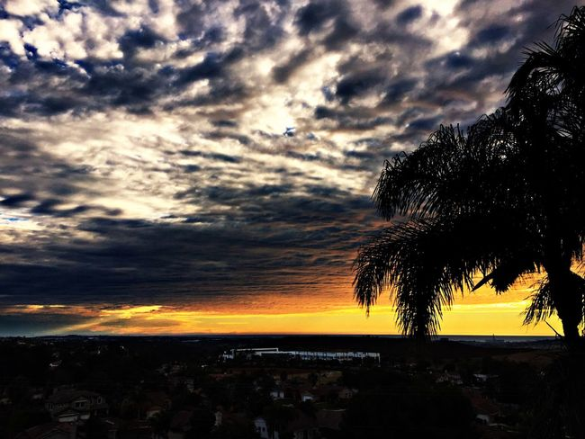 Sky And Clouds Ocean View House Palm Trees Sunset Sunlight Sun Oceanside Jesus Saves Perspectives On Nature First Eyeem Photo