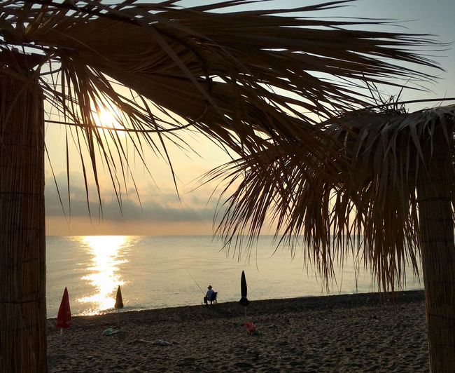 Sea Sunrise Scenics Beauty In Nature Horizon Over Water Nature Water Beach Tranquil Scene Idyllic Tranquility Palm Tree Outdoors Sky Tree Sunrise_Collection Sun Sunlight Italy Italia Calabria Traveling Home For The Holidays
