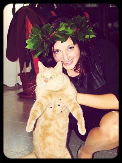 My Cat Graduation