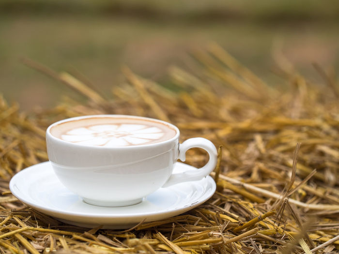 Close-up of coffee cup on field