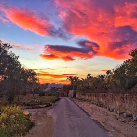 Wonderful cloud colours from last nights sunset. Javea, Spain. Sunset The Way Forward Road Sky Tree Orange Color Cloud - Sky Scenics Tranquil Scene Nature Beauty In Nature Outdoors Landscape Day Tranquility No People