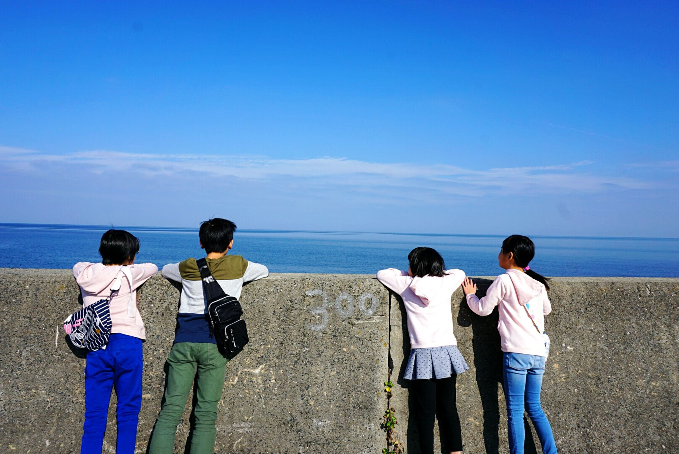 sea, horizon over water, blue, friendship, beach, rear view, sky, teenager, water, togetherness, outdoors, standing, scenics, bonding, beauty in nature, real people, people, day, men, musical instrument, nature, adult
