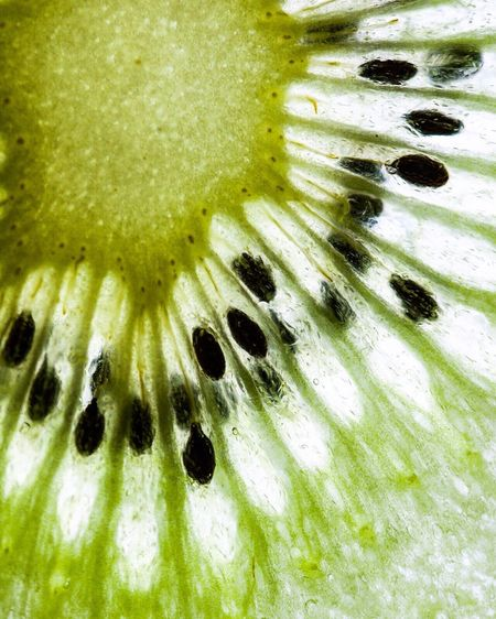 Backlit kiwi fruit Fruit Food Healthy Eating Close-up Green Color Seed Freshness Healthy Lifestyle Ready-to-eat Kiwi Kiwifruit Kiwi - Fruit Kiwis Macro Macro Photography Structure Form Food Stories