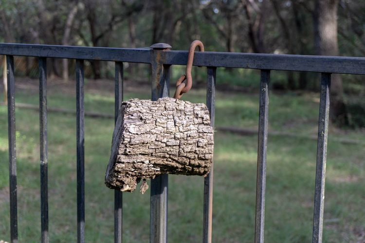 Oak log with hook hanging on metal fence Attached Dangling Logs Wooden Sunlight Screwed Into Wood Metal Rusty Hook Fence Still Life Photography Live Oak Tree Focus On Foreground Day Fence Barrier Close-up Boundary Metal Outdoors Nature Land Field Wood - Material No People