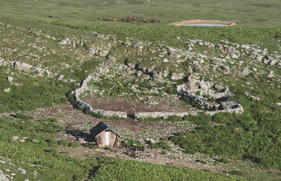 Shepherds living and cattle Parking Architecture High Angle View Landscape Environment Built Structure Building Exterior Plant Day Nature Land Ancient History Field Scenics - Nature No People The Past Grass Green Color Building Rural Scene Outdoors Ancient Civilization