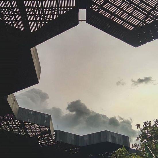 Que bonito es Colombia, su arquitectura y sus espacios públicos, me equivoque de país. Jardinbotanico Medellín Colombia Orquideologia