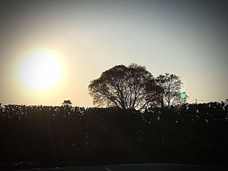 Sunset Sky Sun Sunlight