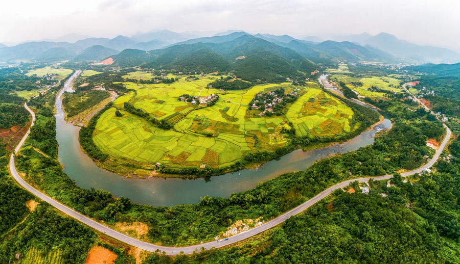 Terraced Field Rice Field Riverscape Roadtrip Yellow Fields Landscape Agriculture Agricultural Field Beauty In Nature Mountain Green Color Growth Mountain Range Outdoors Plantation Nature