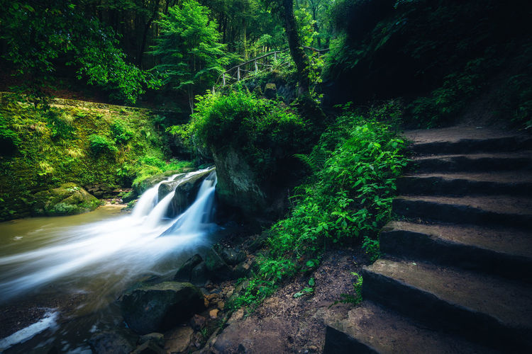 Luxembourg Müllerthal Beauty In Nature Blurred Motion Day Flowing Flowing Water Forest Green Color Growth Land Long Exposure Motion Nature Outdoors Plant Power In Nature Rainforest Rock Scenics - Nature Tree Wald Water Waterfall