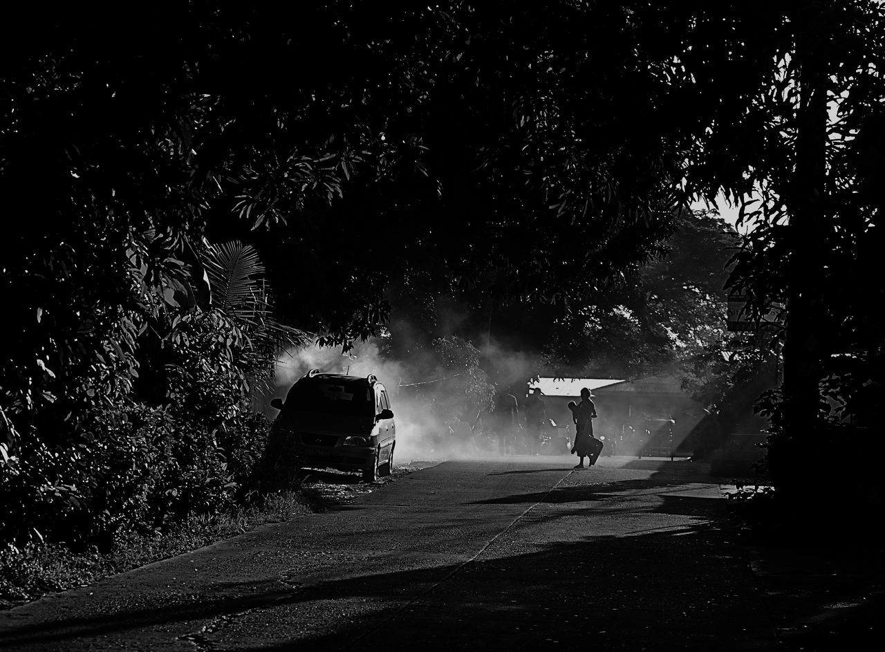 transportation, real people, tree, rear view, road, full length, two people, night, outdoors, men, nature, adult, people
