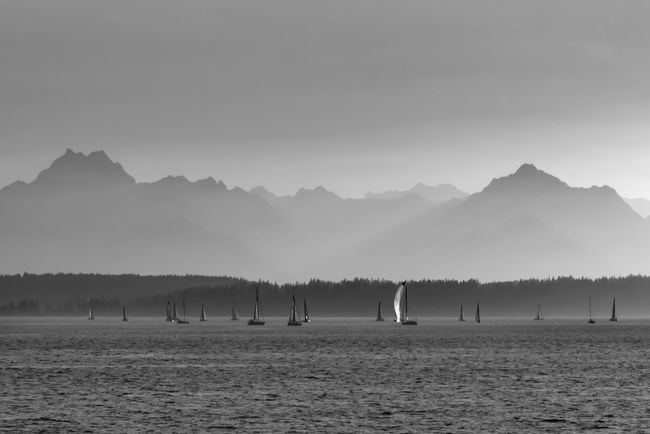 Sailboats sailing in Elliott bay near Seattle with the Olympic mountains in the distance. Black and white Beauty In Nature Black And White Cruise Day Dusk Elliott Bay Hazy  Jagged Peaks Mountain Nature Olympic Mountains Outdoor Recreation Outdoors Pacific Northwest  Port Of Call Red Sailboats Seattle Sky Sunset Tranquility Travel Vacation Water Yacht