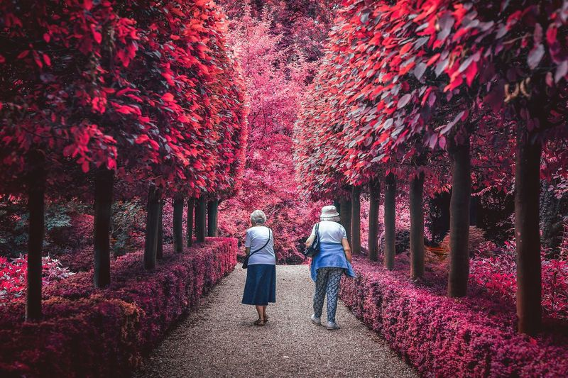 Rear view of man and woman on pink footpath