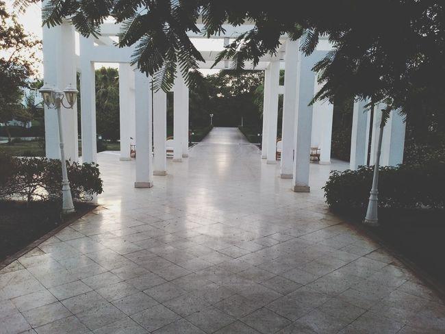 Шарм Эль Шейх, Египет Природа египет отель отдых