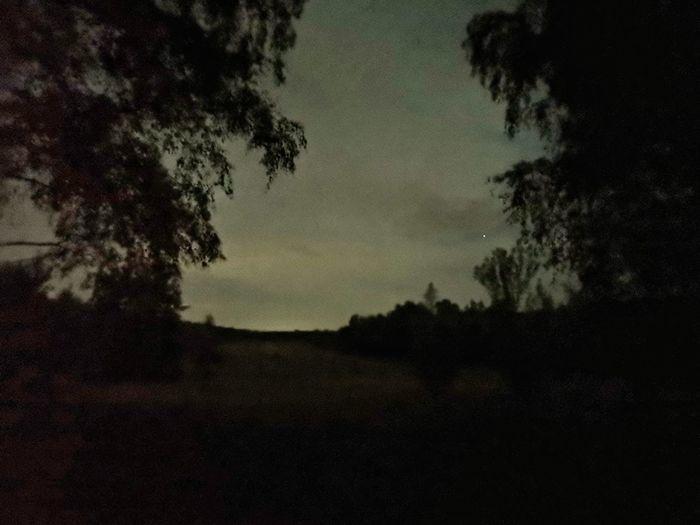 Dark HUAWEI Photo Award: After Dark Tree Silhouette Sky Star Field Star