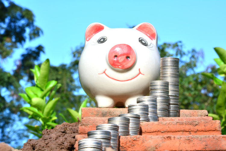 Close-Up Of Piggy Bank And Coins