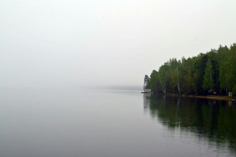 Minimalism Lake Forest Trees озеро увильды челябинск  Russia Россия минимализм