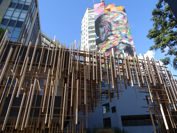 ezefer Architecture Building Exterior Built Structure City Clear Sky Day Eduardo Kobra Kobra Low Angle View Multi Colored No People Oscar Niemeyer Outdoors Sky Skyscraper The Architect - 2017 EyeEm Awards Tree