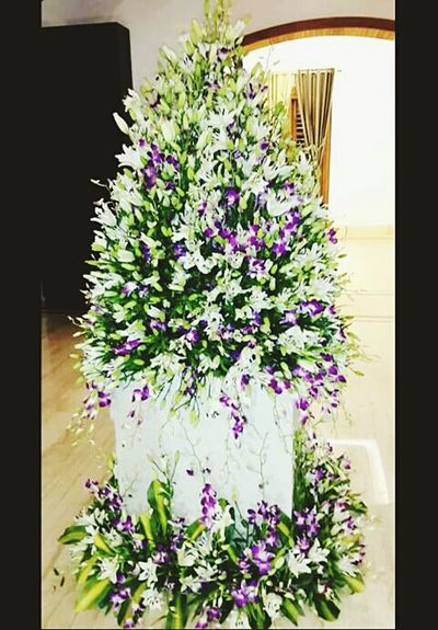 My Work My Hobby Flowermagic Flowerlovers Flower Collection Everyday Lives Orchids Lilly Good Night N Sweet Dream Goodnight✌