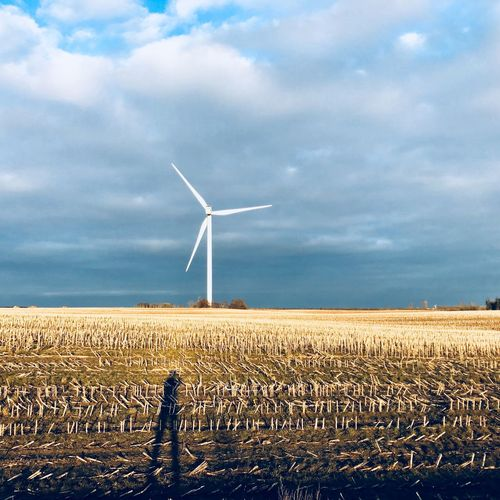 Denmark ShotOnIphone Wind Power Wind Turbine Alternative Energy Environmental Conservation Fuel And Power Generation Renewable Energy Windmill Sky Agriculture Rural Scene Cloud - Sky Industrial Windmill Nature Outdoors Day Technology Field Scenics