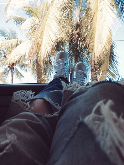 *** Human Leg Personal Perspective One Person Jeans Lifestyles Day Human Body Part Beach Palm Tree First Eyeem Photo EyeEmNewHere