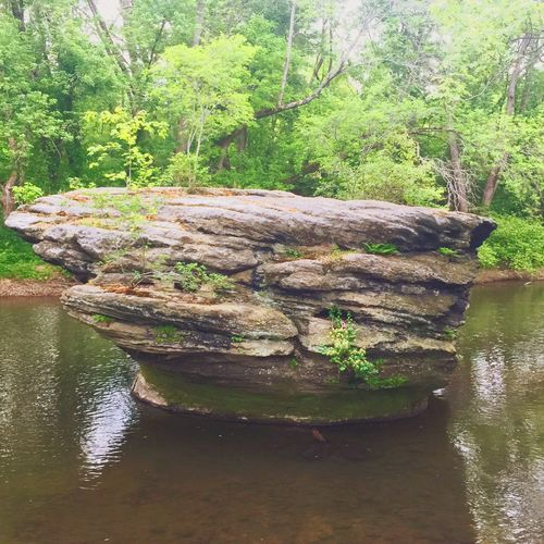 Standing Rock Nature Paying My Respects Memorial Day Rock IPhoneography IPhone Photography Boulder Naturelovers KentOhio