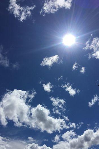 Sun Sunbeam Low