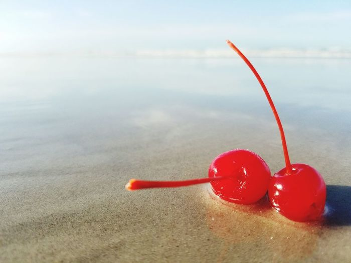 Close-up of cherries in water