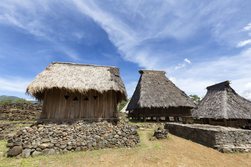 Three traditional houses in the Wologai village near Kelimutu in East Nusa Tenggara, Indonesia. Coffee Houses INDONESIA Moni Rice Tourist Travel Tree Art Attraction Authentic Culture Destination East Nusa Tenggara Ethnic Hard Wood House Kelimutu Landmark Sculpture Tourism Traditonal Tribe Village Wologai