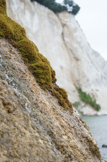 Beauty In Nature Cliff Close-up Coast Day Green Lime Moss Mountain Nature No People Outdoors Rock - Object Rocks Scenics Sea Sky Tranquility Water EyeEmNewHere