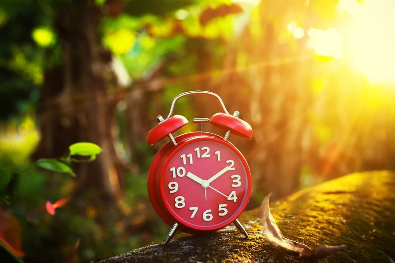 red alarm clock on bokeh background Clockwork Clock Hand Clock EyeEm Selects Time Number Clock Alarm Clock Focus On Foreground Accuracy Minute Hand Tree Close-up Day