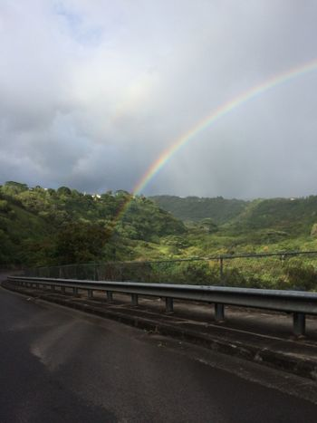 Chasing rainbows On The Road Hawaiian Rainbow nofilter All Natural