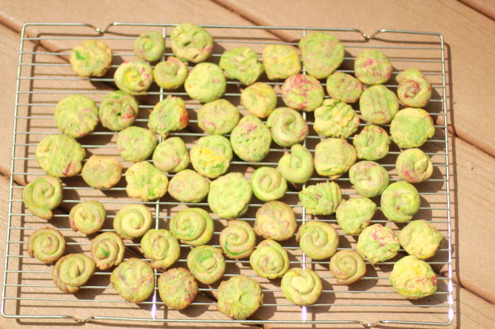 Swedish spritz cookies on wire rack to cool Abundance Bakery Close-up Cookbook Day Dessert Food Food And Drink Freshness Green Color Healthy Eating Indoors  Large Group Of Objects No People Outdoor Photography Party Foods Recipe Snack Time! Spritsar Spritz Sweden Swedish Food Traditional Culture Travel Photography Visual Feast