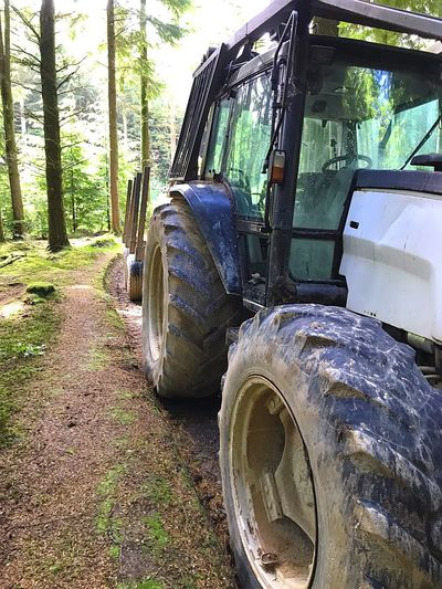 Idless Woods Transportation Stationary Tire Land Vehicle Mode Of Transport Beauty Surrounds You EyeEm Gallery Nature Outdoors No People Large Wheels Trees Woodland Trail Summer Daily Walk Nature Farm Vehicles Agricultural Machinery Investing In Quality Of Life