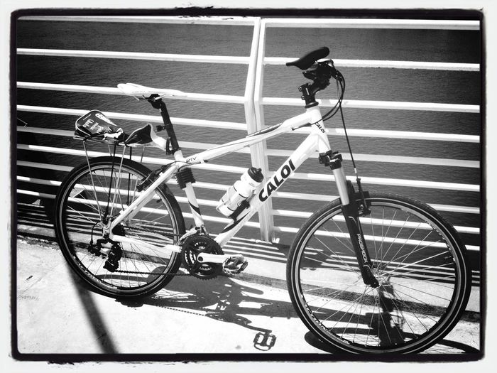 Bike Ride Bike Caloi IPhoneography