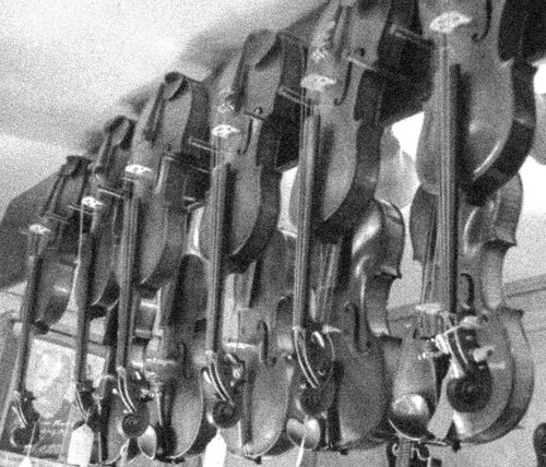 Tuning Pegs Scroll Violin Strings Focus On Foreground Depth Of Focus Curves And Lines Instrument Violin Wood Curves Musical Instruments Music Fine Tuning Blackandwhite Photography Intricate Photography Beautifully Organized