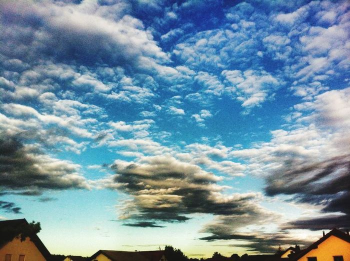 Scenics Cloud - Sky Sky Dramatic Sky Outdoors Nature No People Blue Low Angle View Day Beauty In Nature Tree Multi Colored