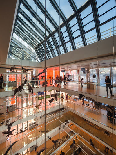 Muse Renzo Piano Architect Animals Architecture Big Void Design Elements Exhibition Glass And Steel Hanging Animals Italy Layered Structure Modern Museum Of Science Stuffed Animals Taxidermy Trento Whale Skeleton