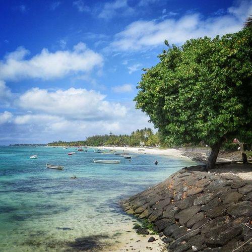 Soleil d'île Maurice / Sunny #mauritius Igersmaurice Mauritius Igworldclub Ic_wow Allshots_ Stunning_shots Igs_photos Urm_feature Worldingram Ilovethisplace Igworldclub_team Igersmauritius World_specialist Globe_travel Cs_reality