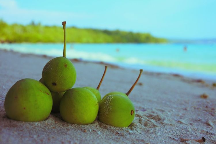 Close-up of fruits at beach