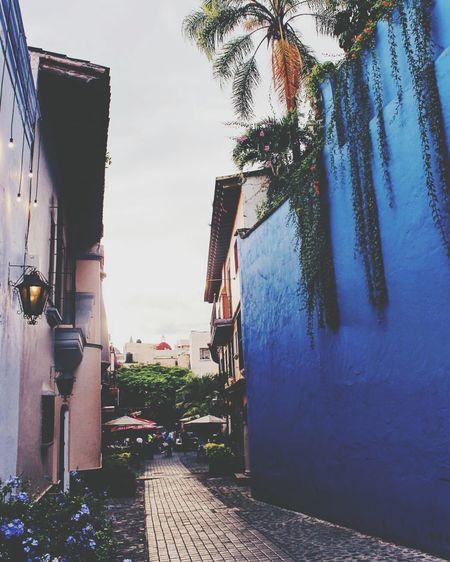 Plazuela del zacate 💕 Cuernavaca Morelos AGente Naranja Mexico Beauty