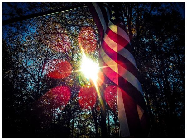 Flag Patriotism Multi Colored No People Close-up Outdoors Day Sky Tree Low Angle View Sunbeam Branch Nature Sunlight Focus On Foreground Bright Shinning Selective Focus Sunny Plant Beauty In Nature Scenics Illuminated