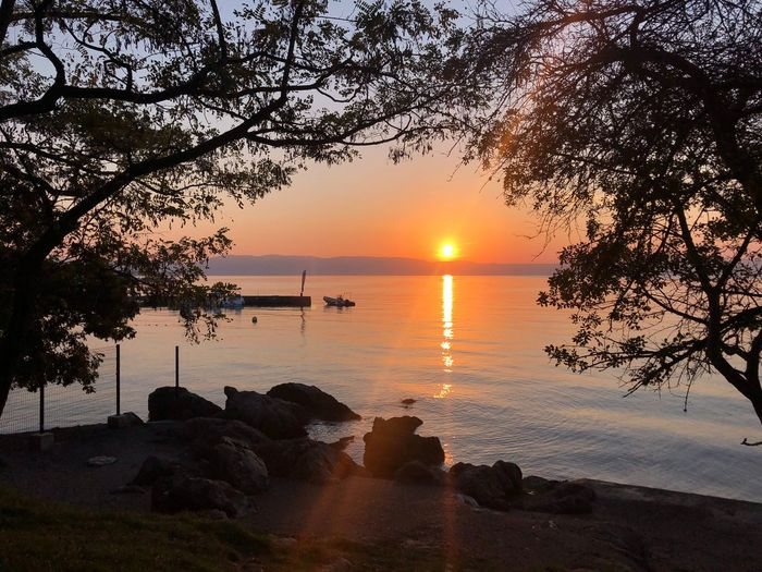 Water Sunset Sky Beauty In Nature Tree Scenics - Nature Tranquility Silhouette Sea Plant Beach Orange Color Reflection Nature No People Horizon Over Water Sun Idyllic Outdoors