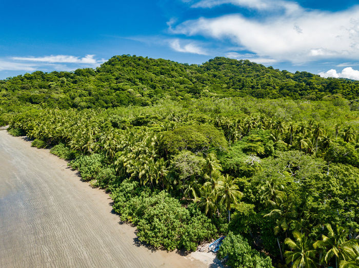 Aerial Imagery Costa Rica Beauty In Nature Cloud - Sky Environment Green Color Jungle Lush Foliage Nature No People Outdoors Plant Rain Forest Scenics - Nature Tranquil Scene Tree Tropical Climate