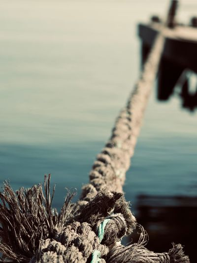 Water Sea Focus On Foreground No People Nature Day Rope Close-up Tranquility Wood - Material Beach Outdoors Selective Focus Metal Land Beauty In Nature Tranquil Scene Rock Strength