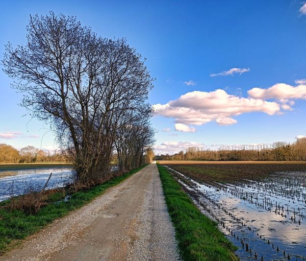 Road by canal amidst field against sky