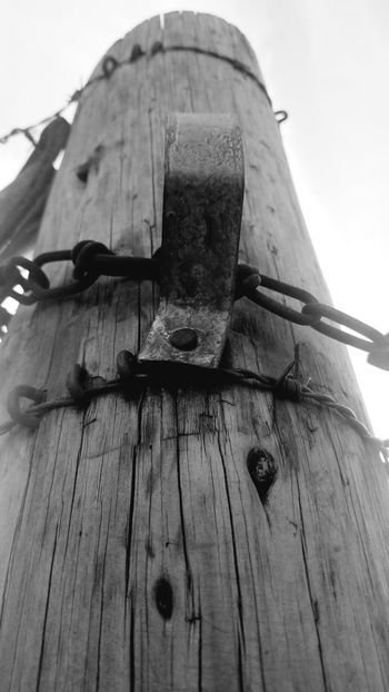 hold on!! Thru The Fence From Where I Stand Beauty In Nature Rural Scenes On The Wall Handle Hard 2handle Close-up Sky