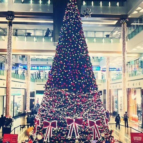 Timmmbberrr. Christmastree Orionmall Bangalore