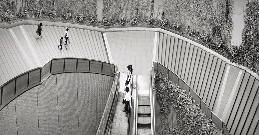 Japan Architecture Building Full Length City City Life The Way Forward Footpath Walkway Stairs Stair Staircase Stairways Stairway Steps Steps And Staircases Escalator Streetphotography Street Photography Monochrome Black And White Blackandwhite Panorama Unrecognizable Person Unrecognizable People Long Goodbye