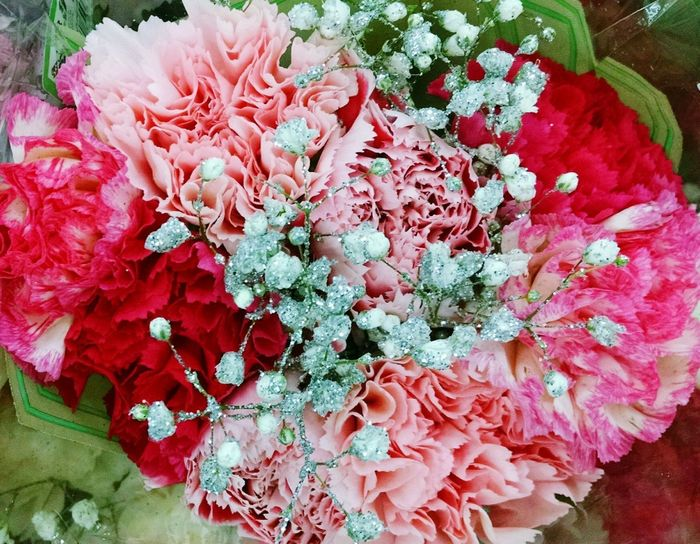 Beauty In Nature Flower Fragility Pink Color Silver Color Red Color Bouquet Of Flowers Poenies Poenies Bouquet Flower Photography Nature Photography Petal Freshness Nature Flower Head Close-up Bouquet Peony  Plant Red Love Yourself Colour Your Horizn Summer Exploratorium Visual Creativity